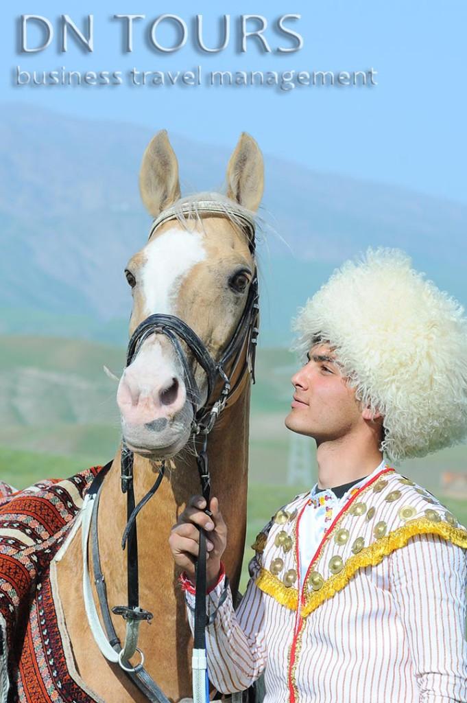 Ахалтекинец, Туркменистан (15)