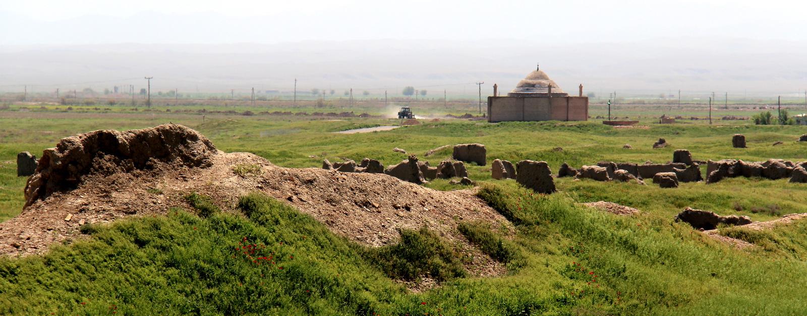 Природа Туркменистан (4)