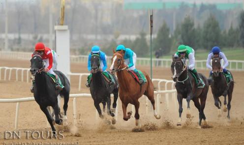 Скачки Туркменистан (1)