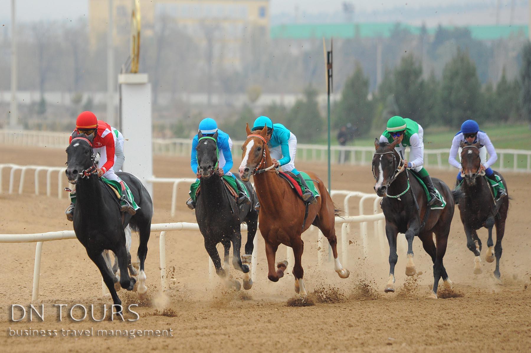 Скачки, Ахалтекинцы, Туркменистан