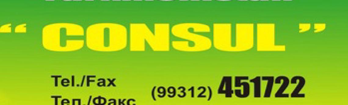 Юридическая фирма Консул, Ашхабад, Туркменистан