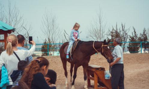 Зоопарк Ашхабада конная прогулка