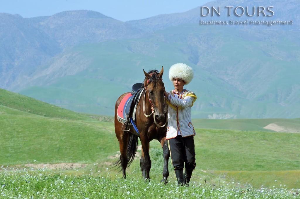 Ахалтекинец, Туркменистан (13)