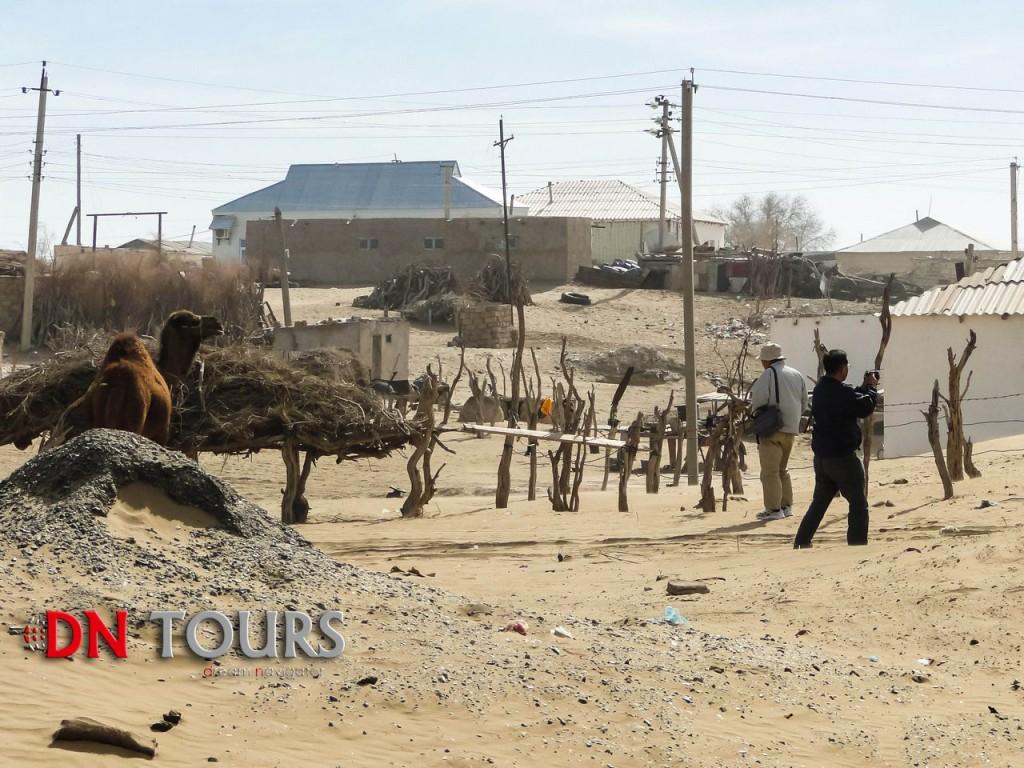 Кекирдек, деревня в Туркменистане (3)